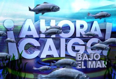 AHORA CAIGO 6 - OK